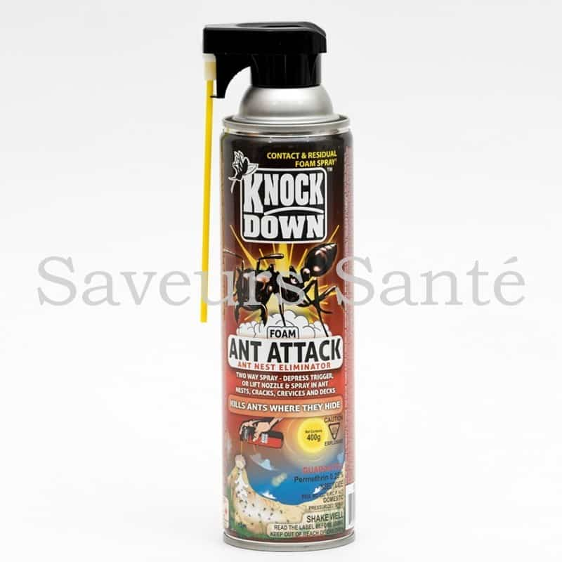 Insecticide en mousse contre fourmis