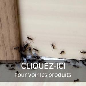 Insecticides pour Maison